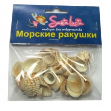 2210 Ракушка Стромбус урсус белый 50гр
