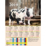 Календарь табельный СИМВОЛ ГОДА-7-2019 (КТ-1342) мелов.картон 200г/м2