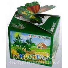 """Азбука растений """"Бобы"""" (детский набор для выращивания)"""