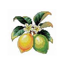 Набор для вышивания крестиком  734-14 Лимончики