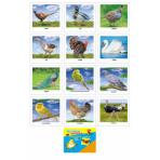 Обучающая карточка ДОМАШНИЕ ПТИЦЫ 5-14-0007