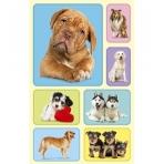 Наклейки (153 Х 92)  Собаки  4-10-0017